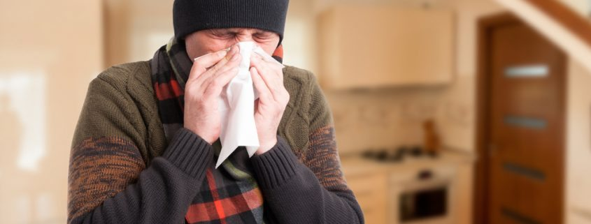 Stop Winter Allergens in Your Home